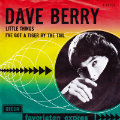 dave-berry-little-things