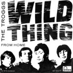 the-troggs-wild-thing-fontana